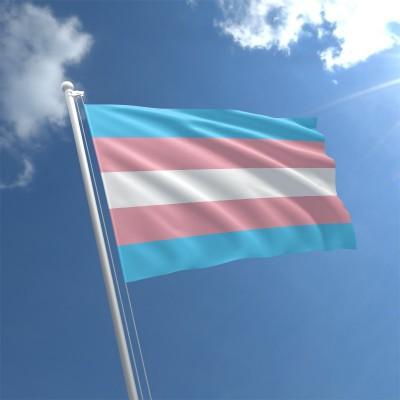 transgender-flag-std.jpg